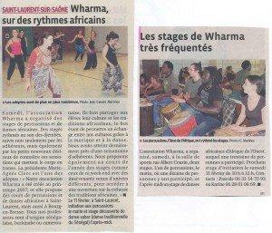 Stage-28-janvier-2012-300x257